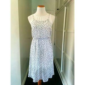 Kensie Midi Polkadot Dress size XS